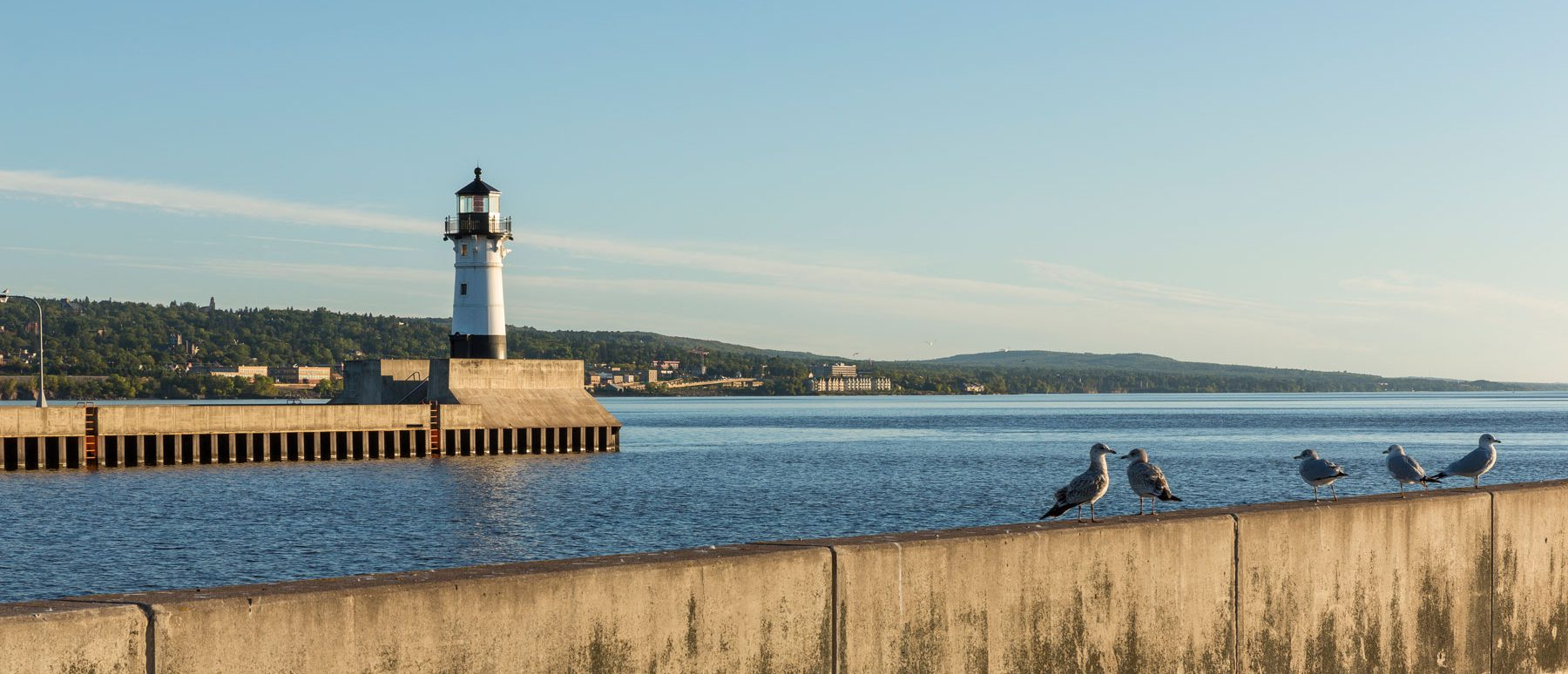 Piers at Duluth's harbor with seagulls